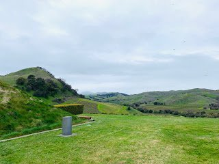 Artesa Vineyards & Winery grounds