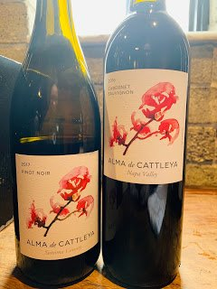 Wine Tasting: 2018 Alma de Cattleya Sauvignon Blanc
