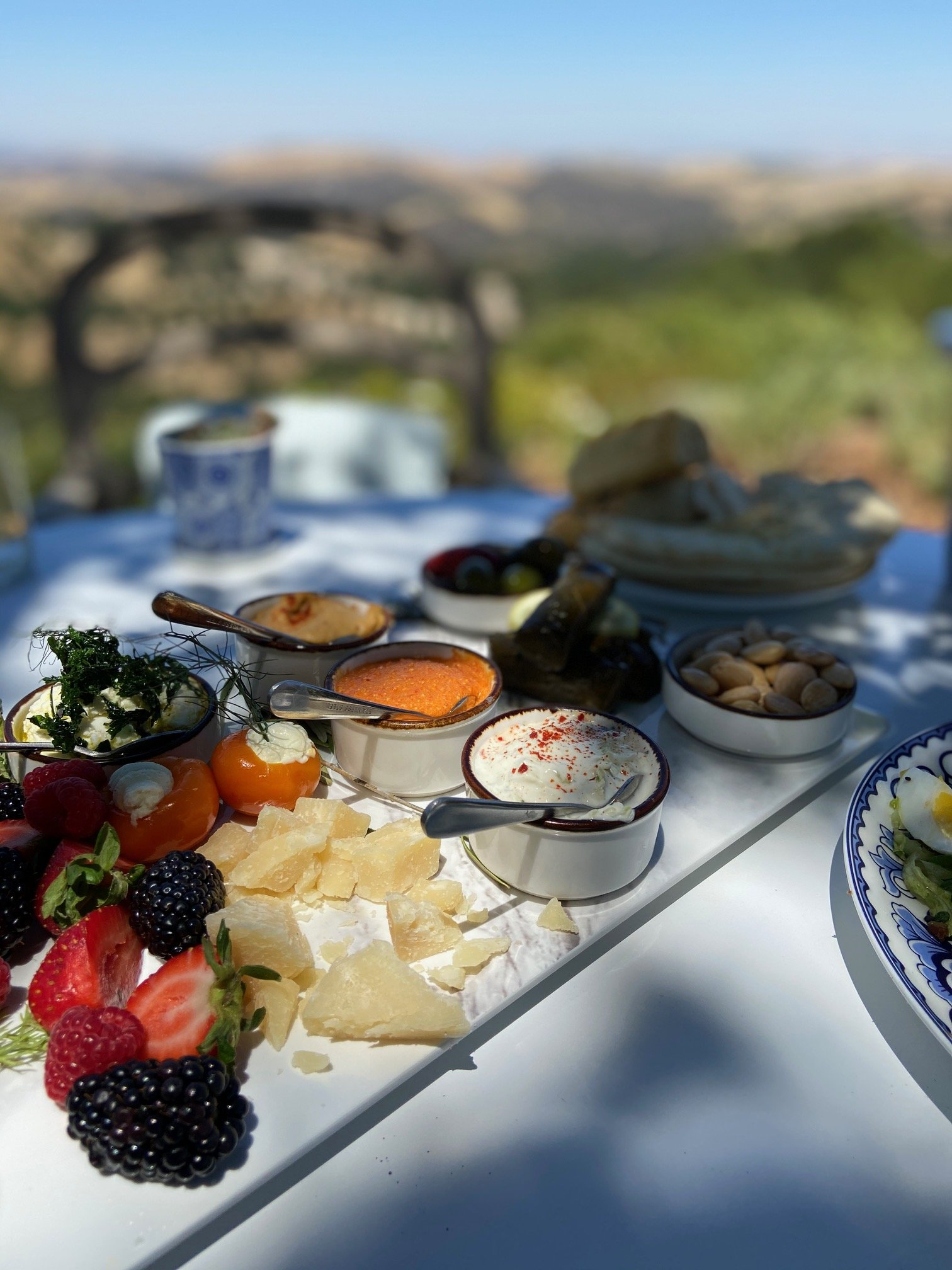 Mezze platter while wine tasting in Paso Robles