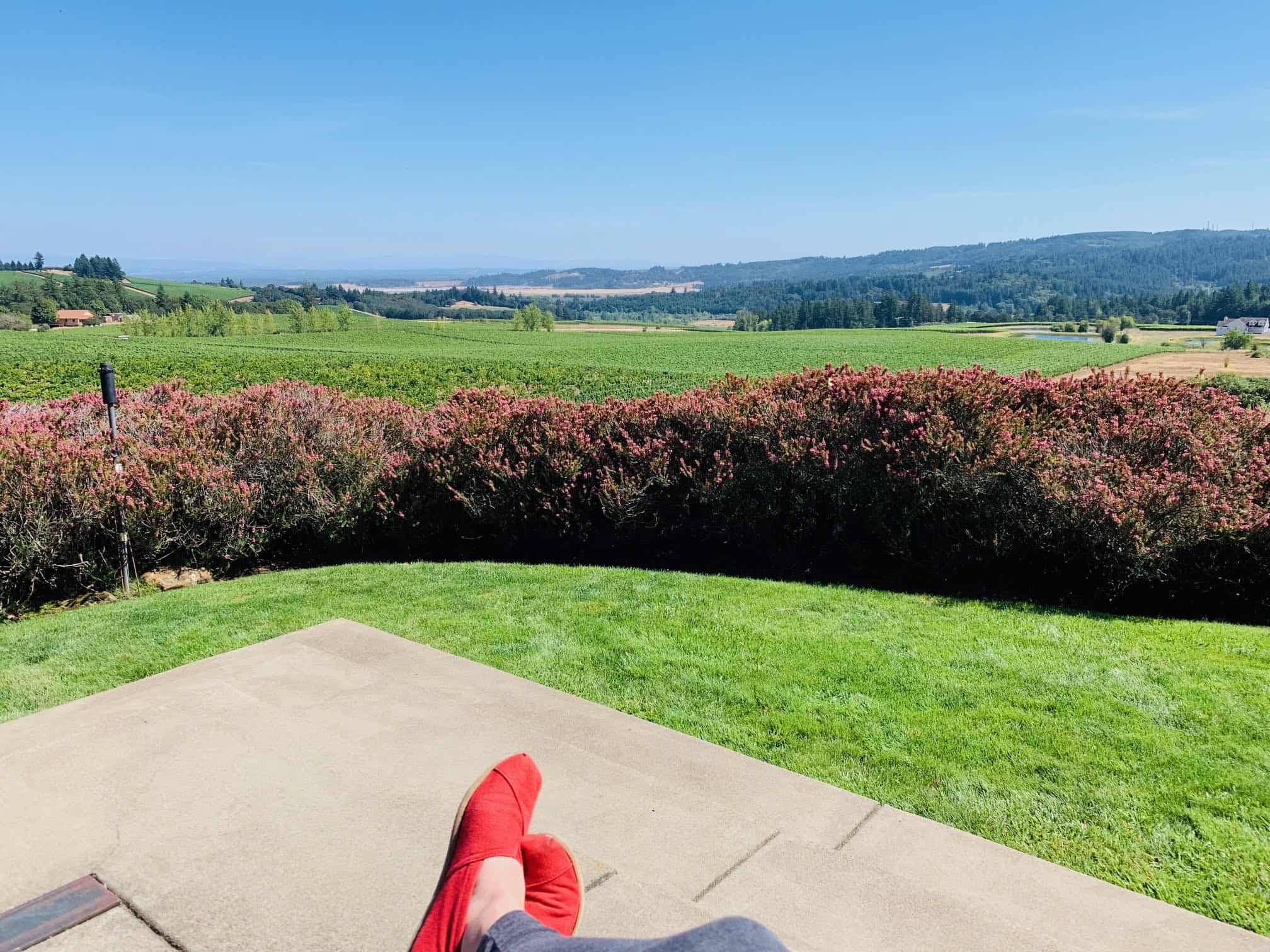 Relaxing in Willamette Valley wine country.